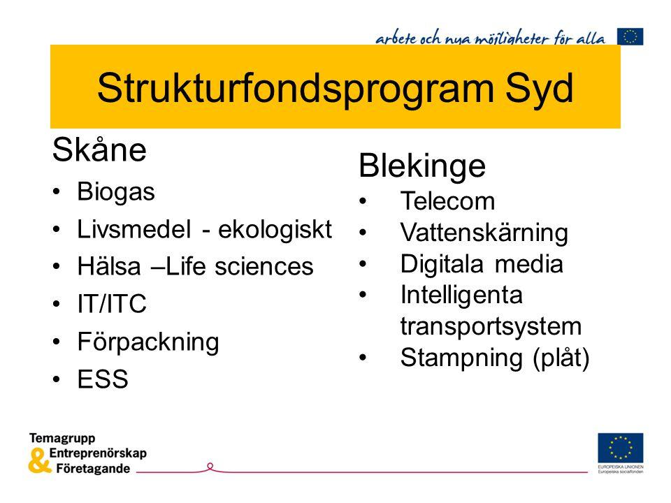 Skåne Biogas Livsmedel - ekologiskt Hälsa –Life sciences IT/ITC Förpackning ESS Blekinge Telecom Vattenskärning Digitala media Intelligenta transportsystem Stampning (plåt) Strukturfondsprogram Syd