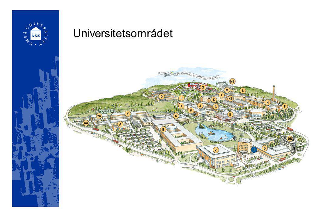 Umeå Universitet har fått en rad utmärkelser och priser för arbete, projekt och forskning där IT legat i fokus eller varit ett viktigt hjälpmedel.