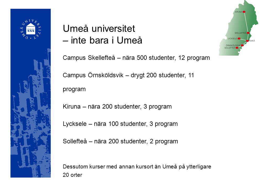 Designhögskolan Handelshögskolan vid Umeå universitet (USBE) Idrottshögskolan Konsthögskolan Miljöhögskolan (i samarbete med SLU) Restauranghögskolan Tekniska högskolan Högskolor inom universitetet