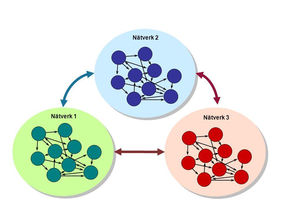 Nätverk 1 Nätverk 2 Nätverk 3
