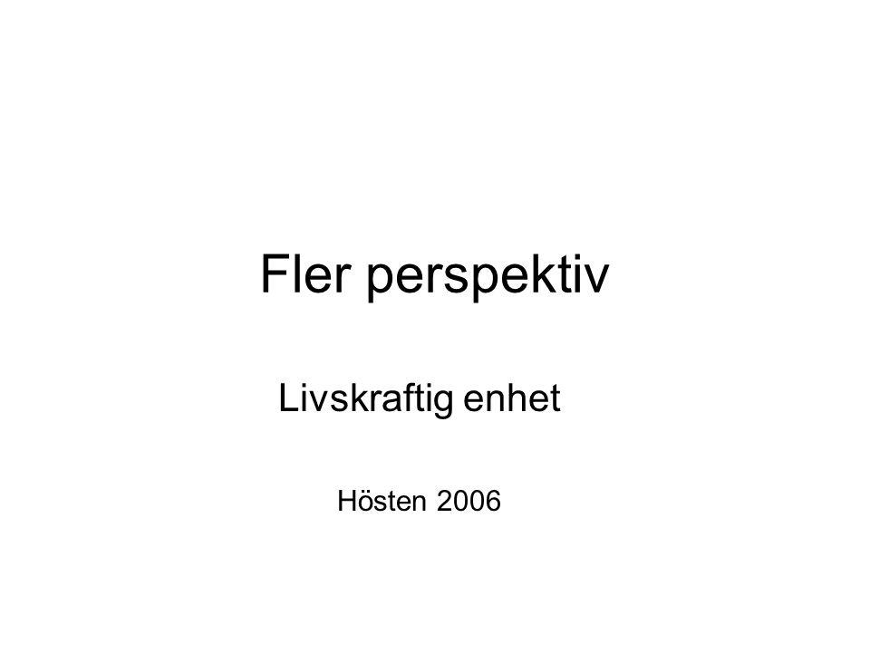 Fler perspektiv Livskraftig enhet Hösten 2006
