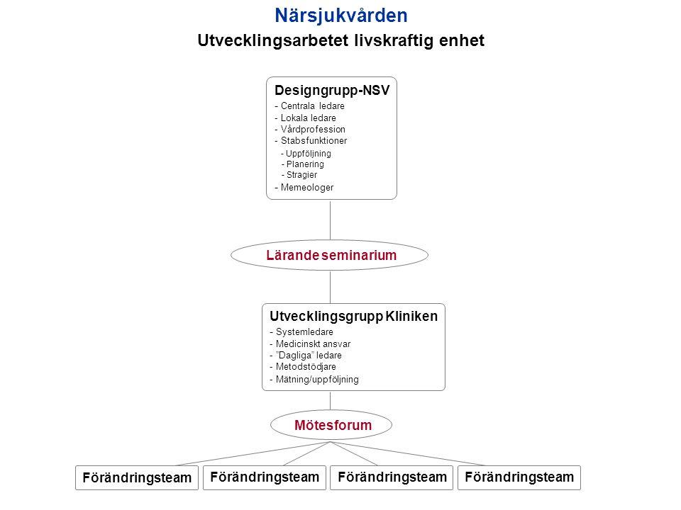 Designgrupp-NSV - Centrala ledare - Lokala ledare - Vårdprofession - Stabsfunktioner - Uppföljning - Planering - Stragier - Memeologer Utvecklingsgrup