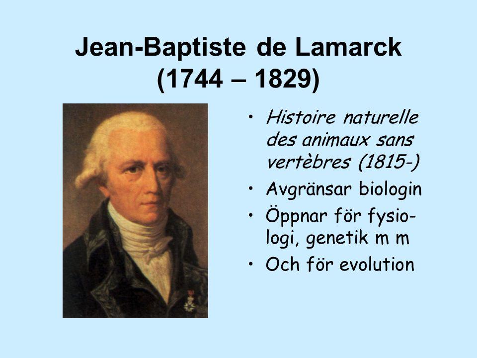 Jean-Baptiste de Lamarck (1744 – 1829) Histoire naturelle des animaux sans vertèbres (1815-) Avgränsar biologin Öppnar för fysio- logi, genetik m m Och för evolution