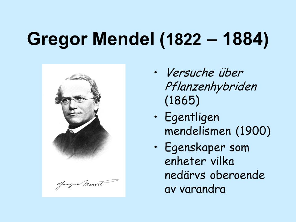 Gregor Mendel ( 1822 – 1884) Versuche über Pflanzenhybriden (1865) Egentligen mendelismen (1900) Egenskaper som enheter vilka nedärvs oberoende av varandra