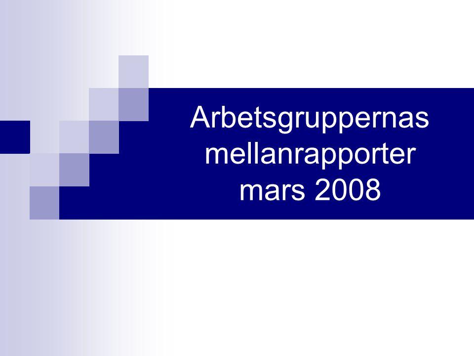 Arbetsgruppernas mellanrapporter mars 2008