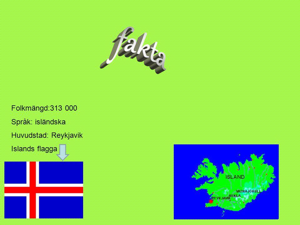 Folkmängd:313 000 Språk: isländska Huvudstad: Reykjavik Islands flagga Folkmängd:313 000Språk:isländskaHuvudstad:ReykjavikFolkmängd:313 000Språk:isländskaHuvudstad:Reykjavik