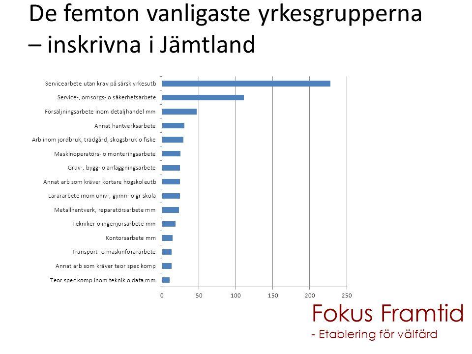De femton vanligaste yrkesgrupperna – inskrivna i Jämtland Fokus Framtid - Etablering för välfärd
