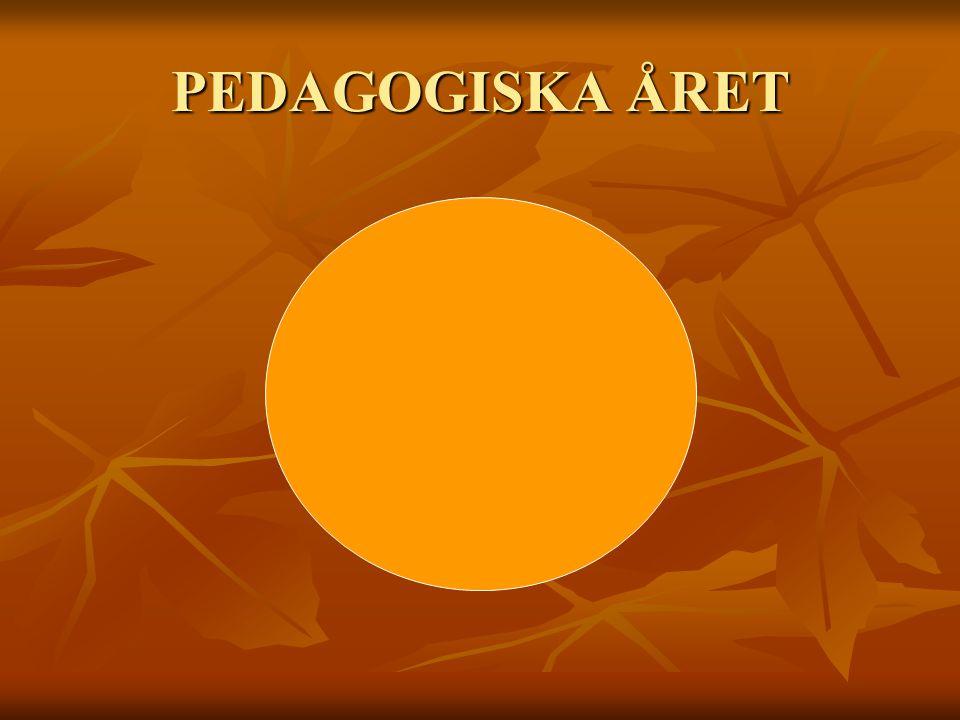 PEDAGOGISKA ÅRET