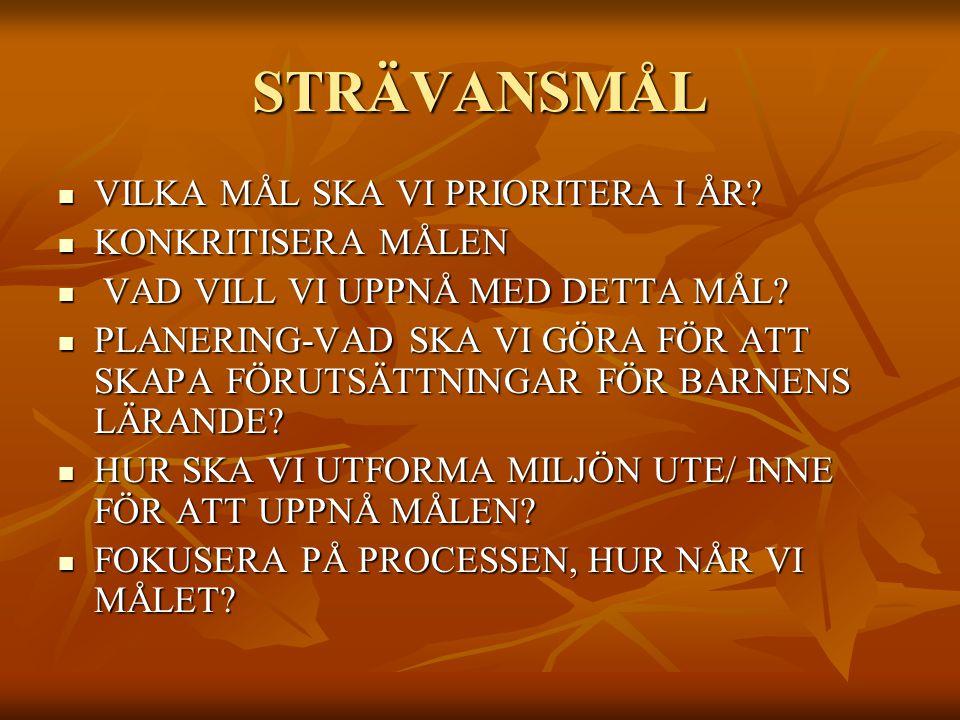 STRÄVANSMÅL VILKA MÅL SKA VI PRIORITERA I ÅR.VILKA MÅL SKA VI PRIORITERA I ÅR.