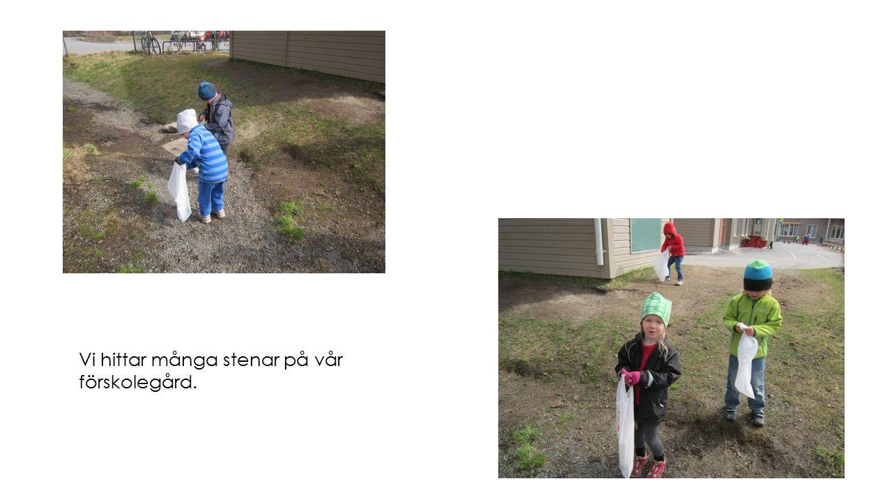 Vi hittar många stenar på vår förskolegård.