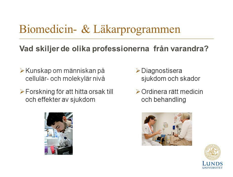 Biomedicin- & Läkarprogrammen  Kunskap om människan på cellulär- och molekylär nivå  Forskning för att hitta orsak till och effekter av sjukdom  Di