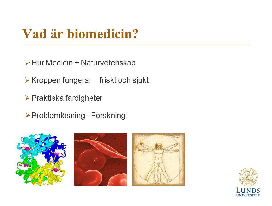 Vad är biomedicin?  Hur Medicin + Naturvetenskap  Kroppen fungerar – friskt och sjukt  Praktiska färdigheter  Problemlösning - Forskning