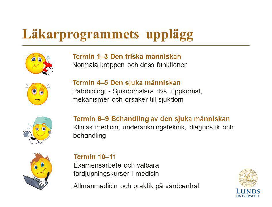 Professionell utveckling – klinisk träning i läkarrollen  Tidig kontakt med läkarens yrkesroll  Träning i patientarbete under termin 1–5 Professionell utveckling  Klinisk utbildning på sjukhus och vårdcentraler, termin 6-9  Placeringar i hela Skåne, främst sjukhusen i Helsingborg, Malmö och Lund