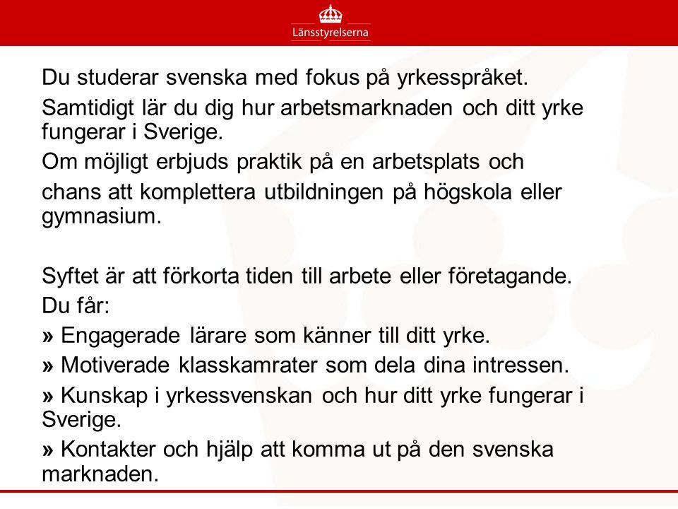 Du studerar svenska med fokus på yrkesspråket. Samtidigt lär du dig hur arbetsmarknaden och ditt yrke fungerar i Sverige. Om möjligt erbjuds praktik p