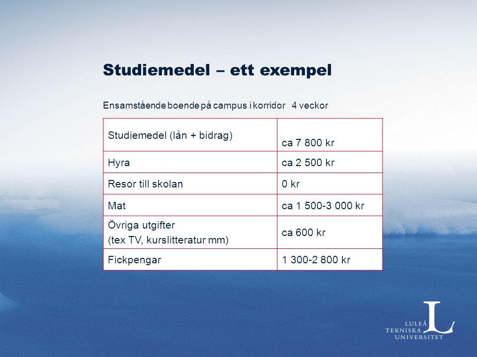 Studiemedel – ett exempel Ensamstående boende på campus i korridor 4 veckor Studiemedel (lån + bidrag) ca 7 800 kr Hyraca 2 500 kr Resor till skolan0