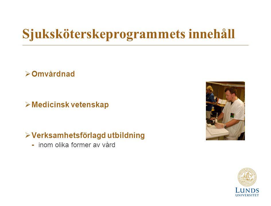Sjuksköterskeprogrammets innehåll  Omvårdnad  Medicinsk vetenskap  Verksamhetsförlagd utbildning - inom olika former av vård