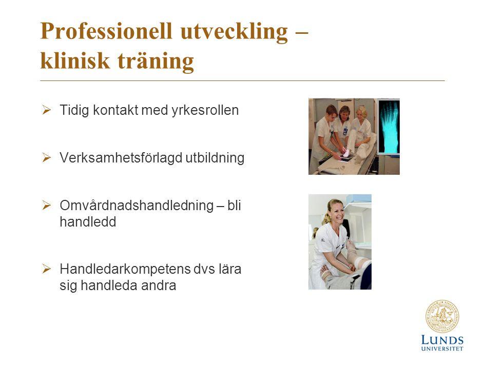 Professionell utveckling – klinisk träning  Tidig kontakt med yrkesrollen  Verksamhetsförlagd utbildning  Omvårdnadshandledning – bli handledd  Handledarkompetens dvs lära sig handleda andra