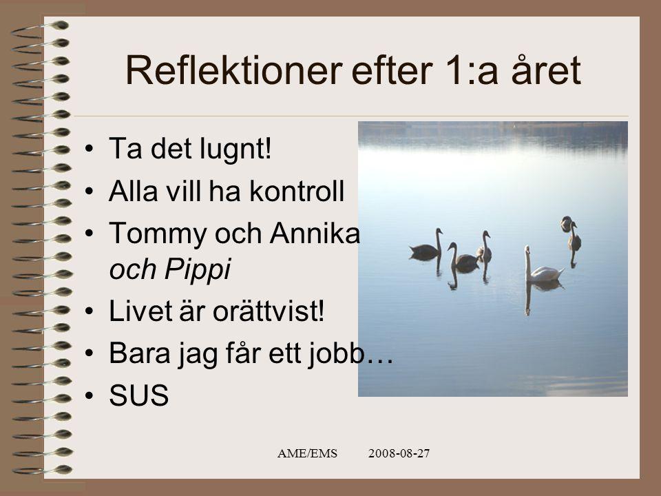 AME/EMS 2008-08-27 Reflektioner efter 1:a året Ta det lugnt.