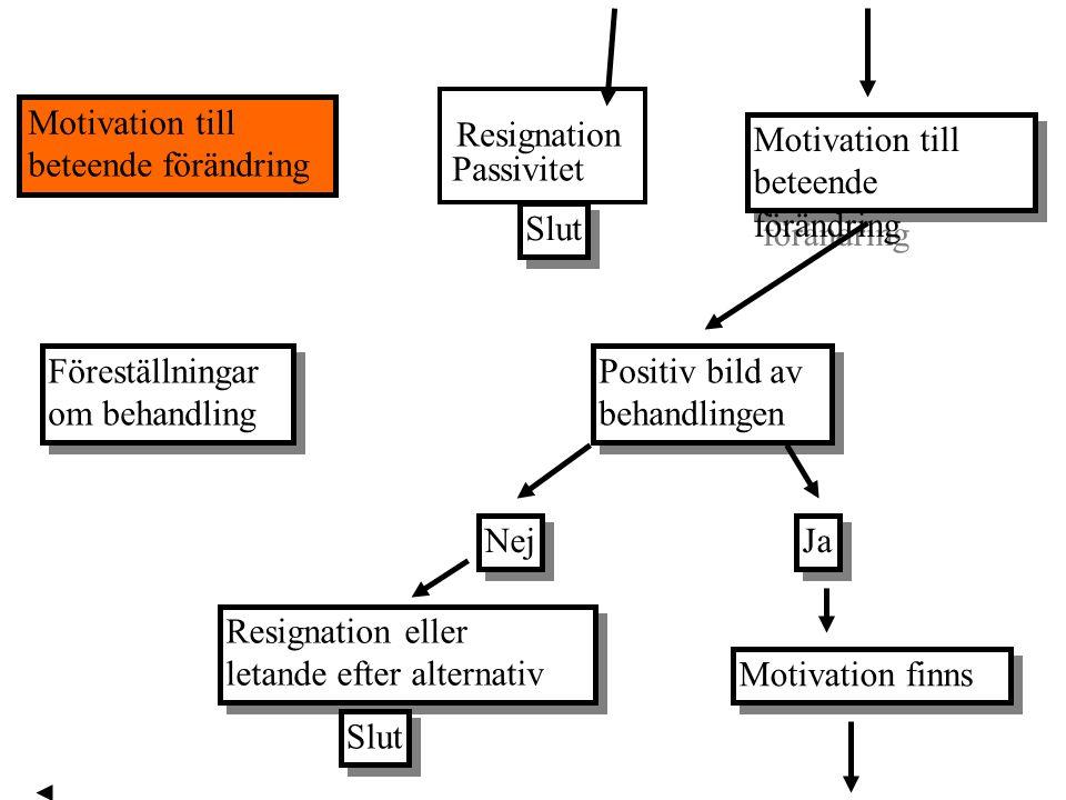 Resignation Passivitet Motivation till beteende förändring Motivation till beteende förändring Motivation till beteende förändring Slut Föreställninga