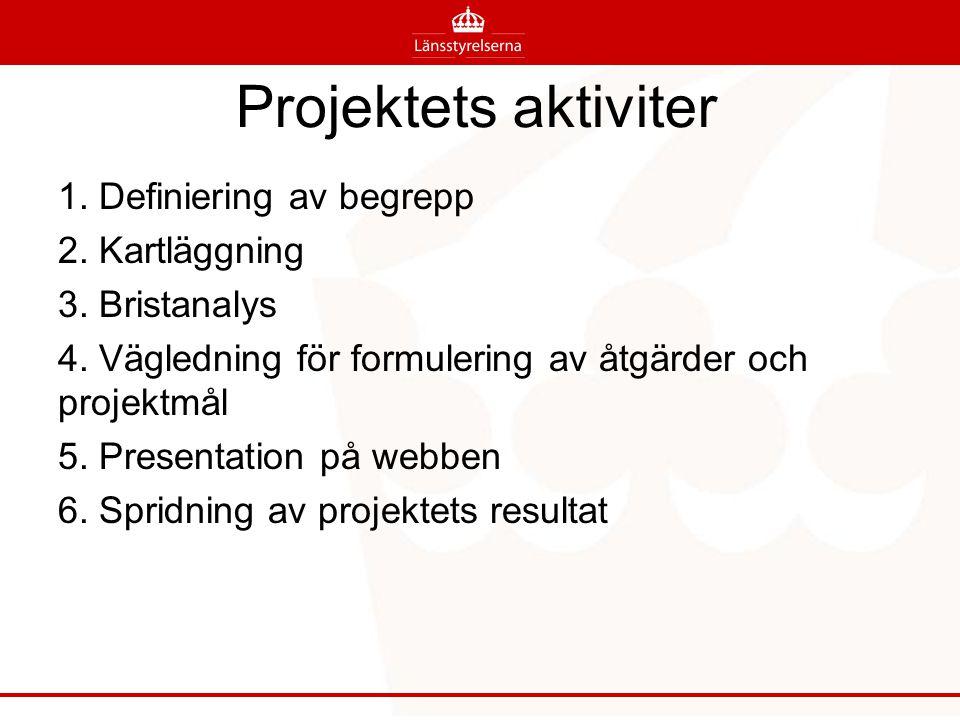 Projektets aktiviter 1. Definiering av begrepp 2. Kartläggning 3. Bristanalys 4. Vägledning för formulering av åtgärder och projektmål 5. Presentation