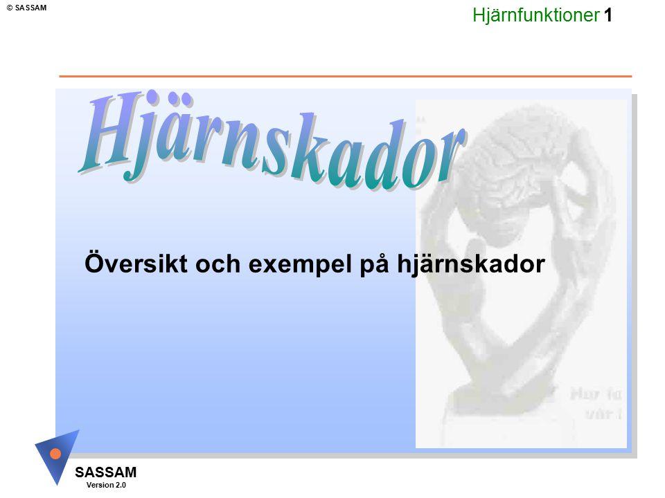 Hjärnfunktioner 2 SASSAM Version 2.0 © SASSAM Huvudmål: Hjärnskador Ge praktiska råd 1.