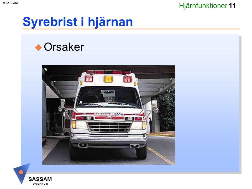 Hjärnfunktioner 11 SASSAM Version 2.0 © SASSAM Syrebrist i hjärnan u Orsaker