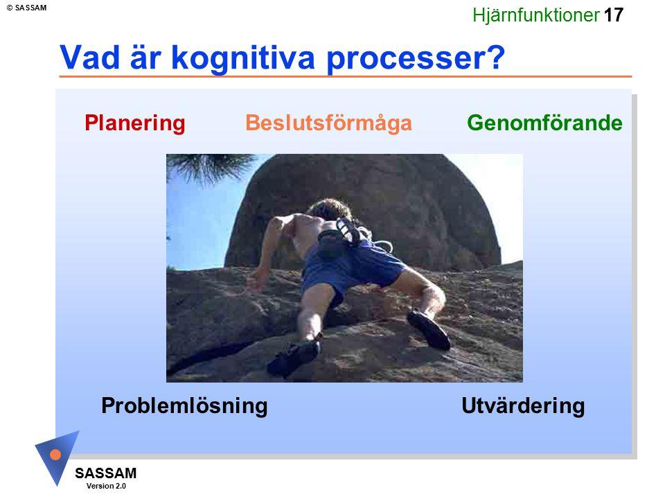 Hjärnfunktioner 17 SASSAM Version 2.0 © SASSAM Vad är kognitiva processer? Beslutsförmåga Problemlösning Genomförande Utvärdering Planering