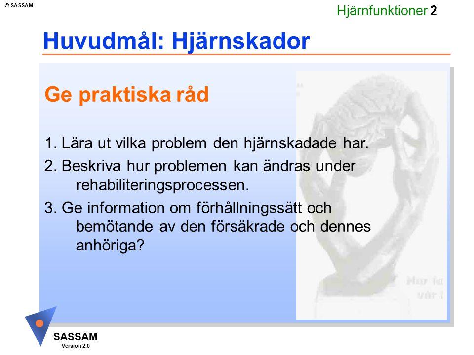 Hjärnfunktioner 2 SASSAM Version 2.0 © SASSAM Huvudmål: Hjärnskador Ge praktiska råd 1. Lära ut vilka problem den hjärnskadade har. 2. Beskriva hur pr