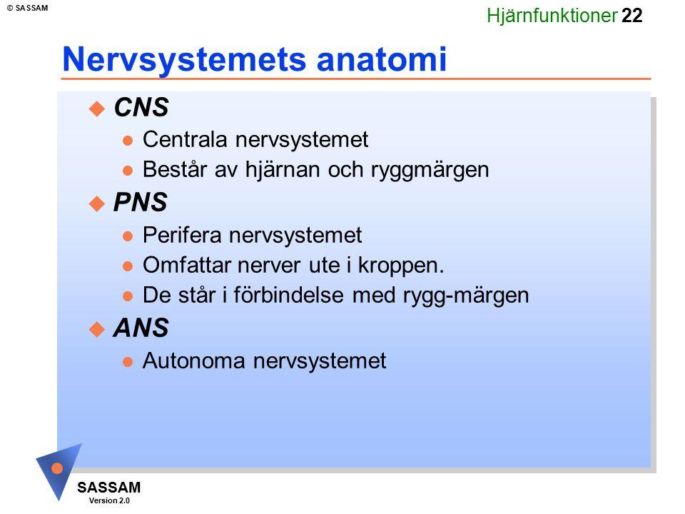 Hjärnfunktioner 22 SASSAM Version 2.0 © SASSAM Nervsystemets anatomi u CNS l Centrala nervsystemet l Består av hjärnan och ryggmärgen u PNS l Perifera