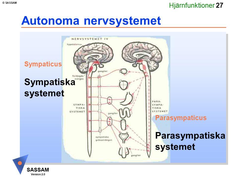 Hjärnfunktioner 27 SASSAM Version 2.0 © SASSAM Autonoma nervsystemet Parasympaticus Parasympatiska systemet Sympaticus Sympatiska systemet