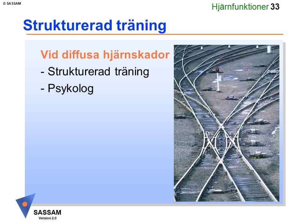 Hjärnfunktioner 33 SASSAM Version 2.0 © SASSAM Strukturerad träning Vid diffusa hjärnskador - Strukturerad träning - Psykolog