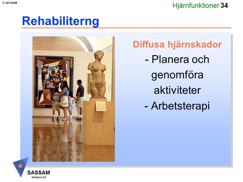 Hjärnfunktioner 34 SASSAM Version 2.0 © SASSAM Rehabiliterng Diffusa hjärnskador - Planera och genomföra aktiviteter - Arbetsterapi