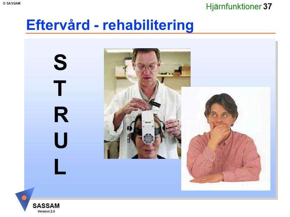 Hjärnfunktioner 37 SASSAM Version 2.0 © SASSAM Eftervård - rehabilitering STRULSTRUL