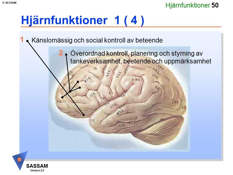 Hjärnfunktioner 50 SASSAM Version 2.0 © SASSAM Hjärnfunktioner 1 ( 4 ) Känslomässig och social kontroll av beteende Överordnad kontroll, planering och