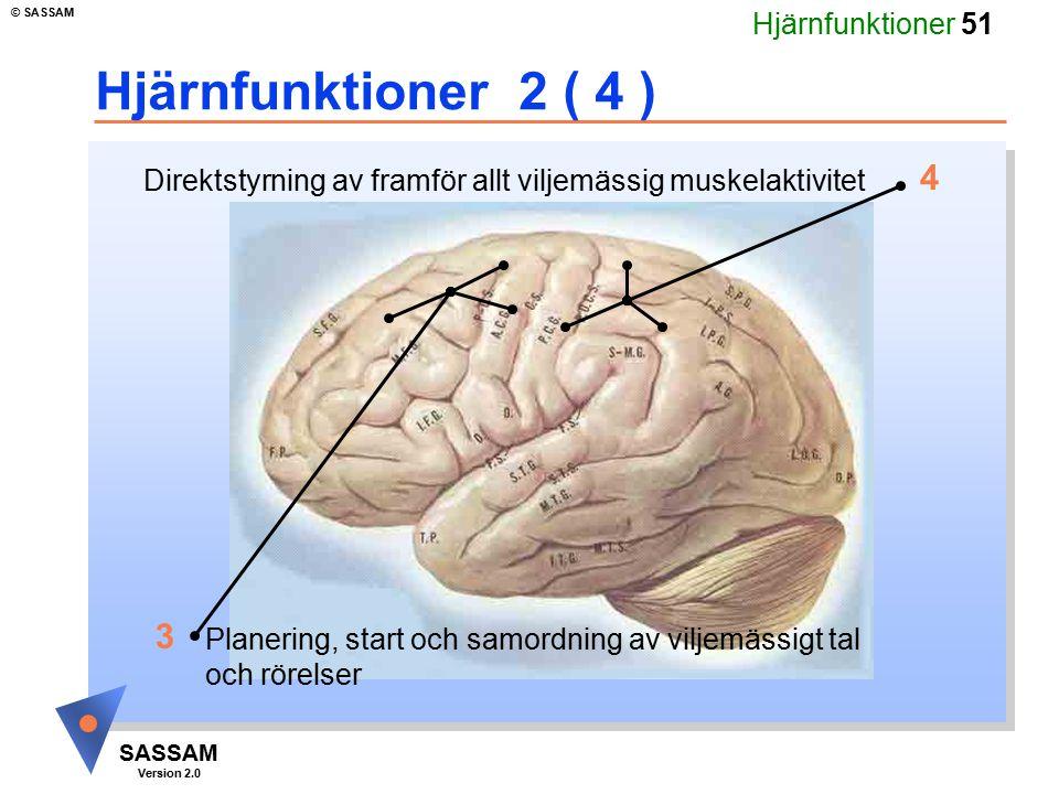 Hjärnfunktioner 51 SASSAM Version 2.0 © SASSAM Hjärnfunktioner 2 ( 4 ) Direktstyrning av framför allt viljemässig muskelaktivitet Planering, start och