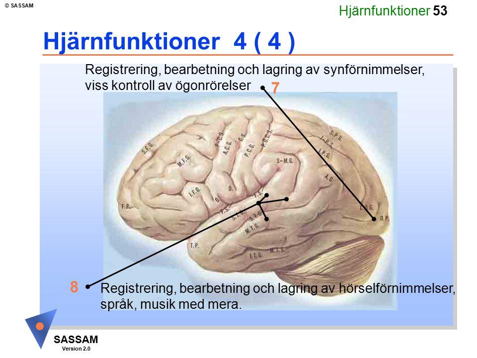 Hjärnfunktioner 53 SASSAM Version 2.0 © SASSAM Hjärnfunktioner 4 ( 4 ) Registrering, bearbetning och lagring av synförnimmelser, viss kontroll av ögon