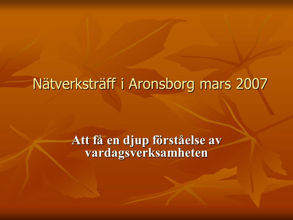 Nätverksträff i Aronsborg mars 2007 Att få en djup förståelse av vardagsverksamheten
