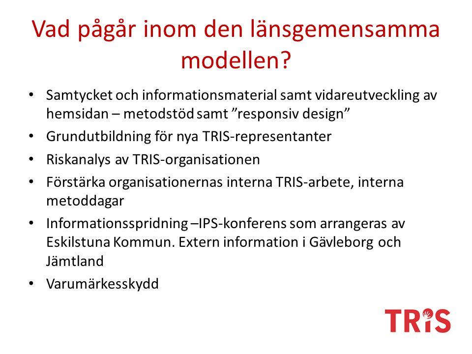"""Vad pågår inom den länsgemensamma modellen? Samtycket och informationsmaterial samt vidareutveckling av hemsidan – metodstöd samt """"responsiv design"""" G"""