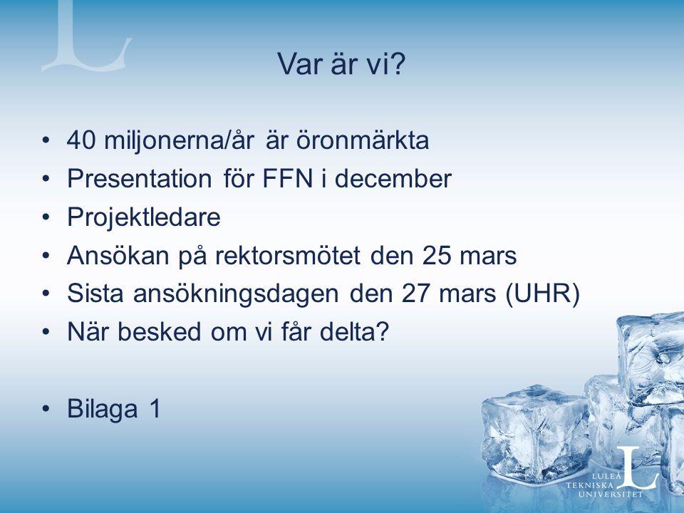 40 miljonerna/år är öronmärkta Presentation för FFN i december Projektledare Ansökan på rektorsmötet den 25 mars Sista ansökningsdagen den 27 mars (UH