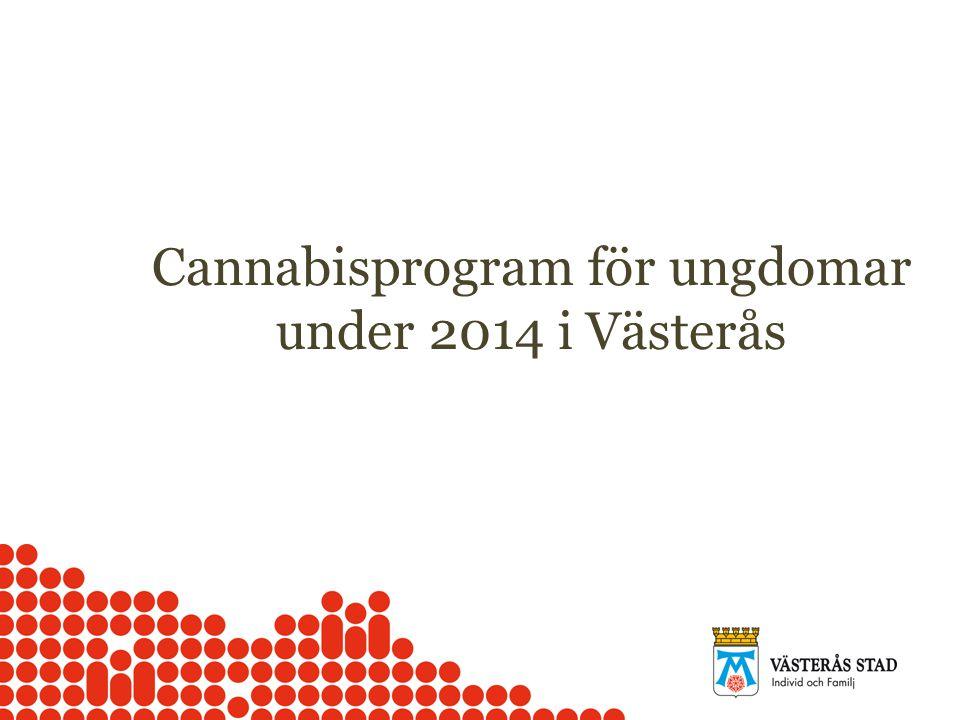 Cannabisprogram för ungdomar under 2014 i Västerås