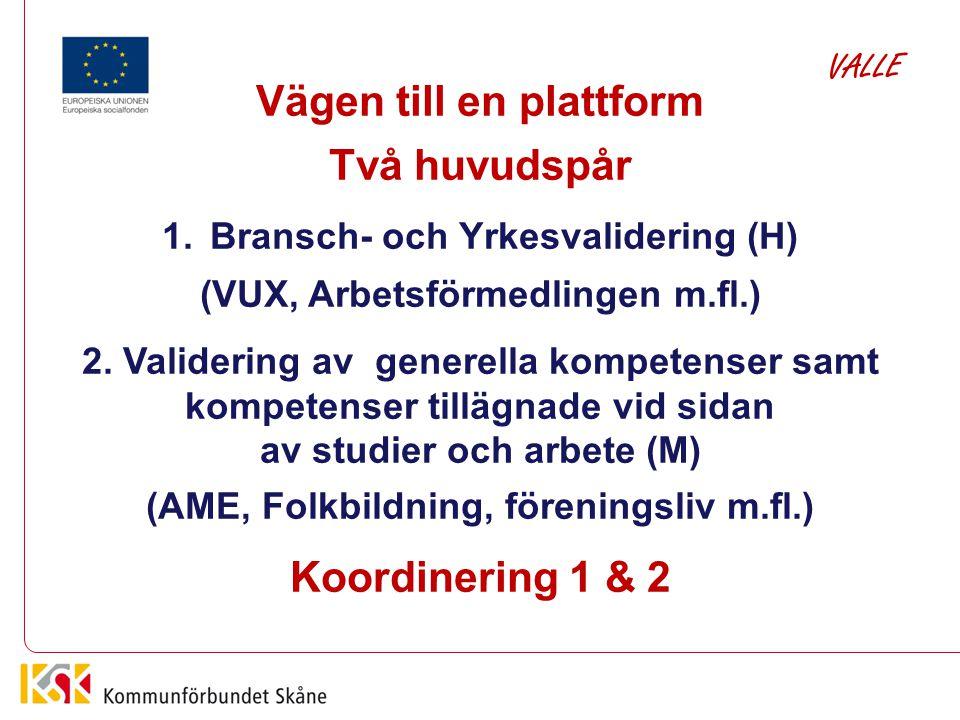 Vägen till en plattform Två huvudspår 1.Bransch- och Yrkesvalidering (H) (VUX, Arbetsförmedlingen m.fl.) 2. Validering av generella kompetenser samt k