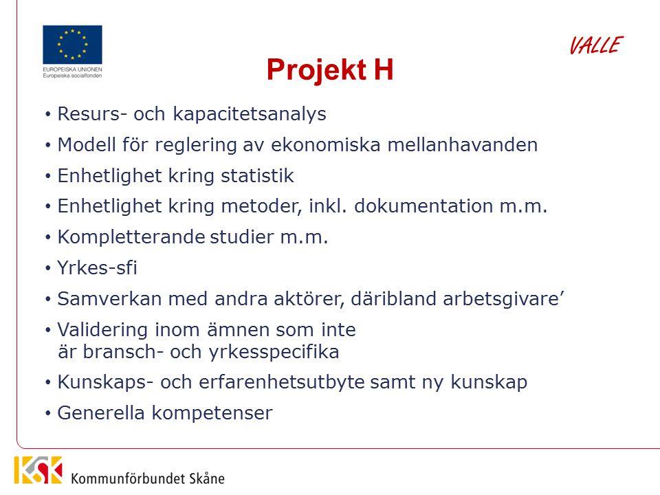 Projekt H Resurs- och kapacitetsanalys Modell för reglering av ekonomiska mellanhavanden Enhetlighet kring statistik Enhetlighet kring metoder, inkl.