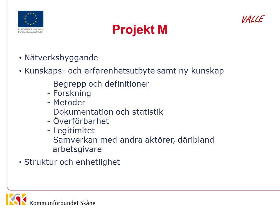 Projekt M Nätverksbyggande Kunskaps- och erfarenhetsutbyte samt ny kunskap - Begrepp och definitioner - Forskning - Metoder - Dokumentation och statis