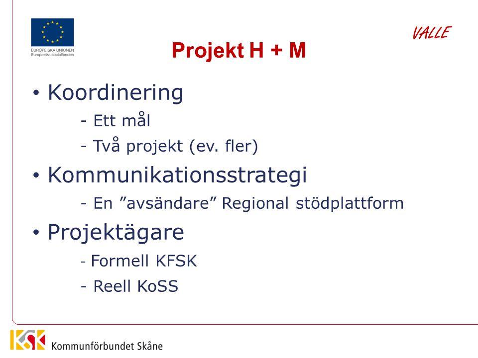 """Projekt H + M Koordinering - Ett mål - Två projekt (ev. fler) Kommunikationsstrategi - En """"avsändare"""" Regional stödplattform Projektägare - Formell KF"""