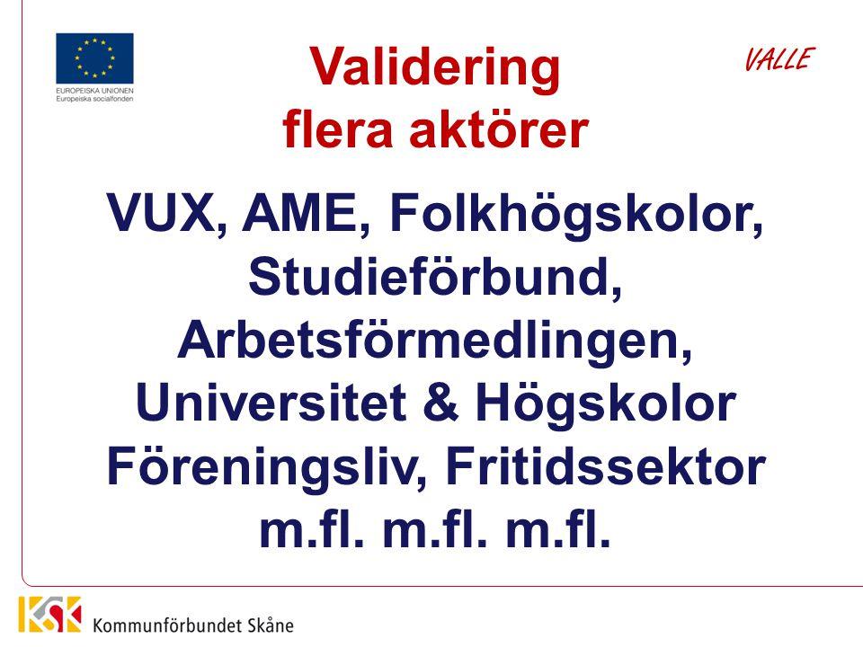 Validering flera aktörer VUX, AME, Folkhögskolor, Studieförbund, Arbetsförmedlingen, Universitet & Högskolor Föreningsliv, Fritidssektor m.fl. m.fl. m