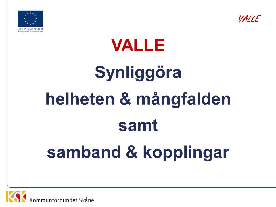 Få validering på olika nivåer och med olika syften att hänga samman, till gagn för individ och samhälle Samverkan & Samarbete VALLE