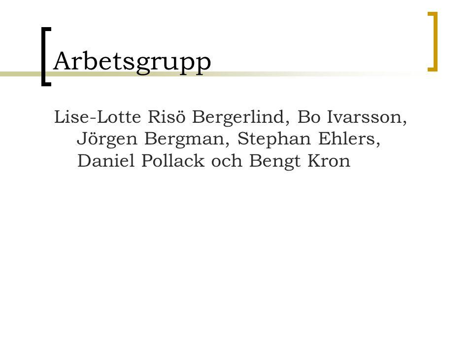 Arbetsgrupp Lise-Lotte Risö Bergerlind, Bo Ivarsson, Jörgen Bergman, Stephan Ehlers, Daniel Pollack och Bengt Kron