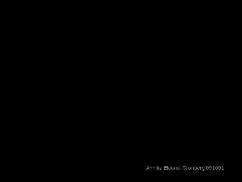 Annika Eklund-Grönberg 091001