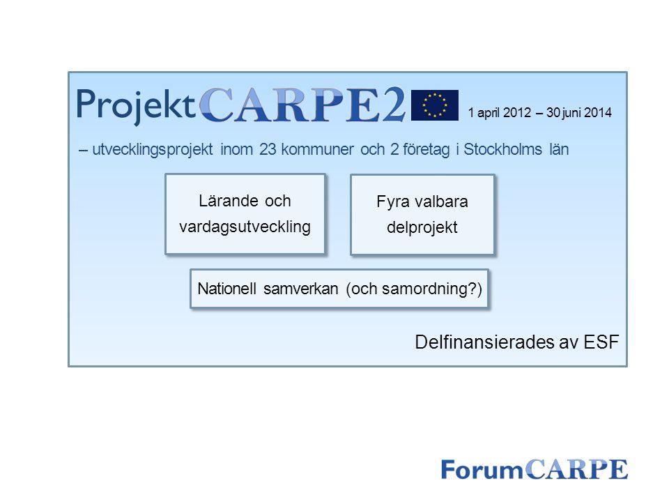 1 april 2012 – 30 juni 2014 – utvecklingsprojekt inom 23 kommuner och 2 företag i Stockholms län Delfinansierades av ESF Lärande och vardagsutveckling