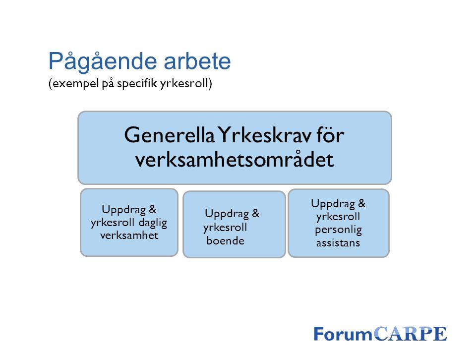 Pågående arbete (exempel på specifik yrkesroll) Generella Yrkeskrav för verksamhetsområdet Uppdrag & yrkesroll daglig verksamhet Uppdrag & yrkesroll p
